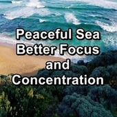 Peaceful Sea Better Focus and Concentration de Massage Music