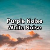 Purple Noise White Noise by White Noise Babies