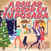 A Bailar y Gozar En Tu Posada by Various Artists