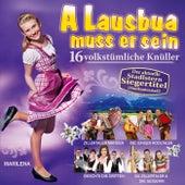 A Lausbua muss er sein by Various Artists
