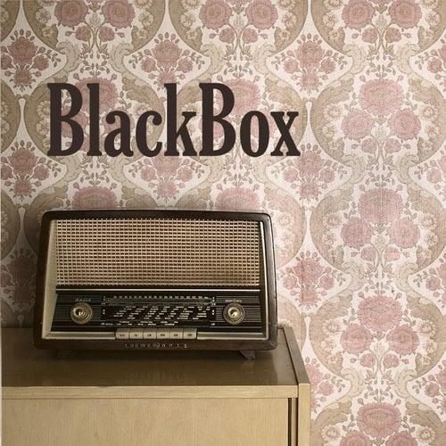 BlackBox von Black Box