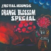 Orange Blossom Special by The Royal Hounds