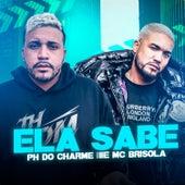 Ela Sabe (feat. Mc Brisola) (Brega Funk) de Phdocharme