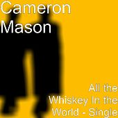 All the Whiskey In the World - Single by Cameron Mason