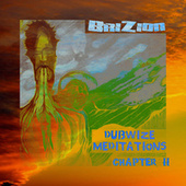 Dubwize Meditations Chapter 2 von Brizion