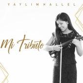 Mi Tributo (Instrumental Version) von Yaylim Hallel