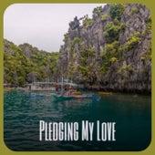 Pledging My Love von Various Artists