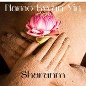 Namo Kwan Yin by Nanda