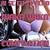 Ai Se Eu Te Pego: Waka Waka Compilation by Various Artists