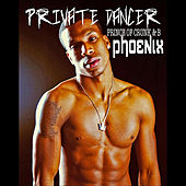 Private Dancer by Phoenix