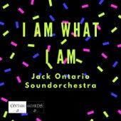 I Am What I Am by Jack Ontario Soundorchestra