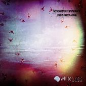 Lucid Dreaming by Synthetic Epiphany