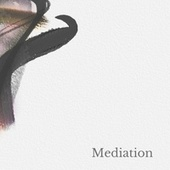 Mediation de Landy