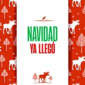 Navidad Ya Llegó de Various Artists