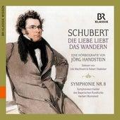 Schubert: Die Liebe liebt das Wandern by Robert Stadlober