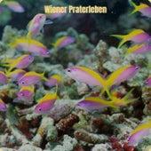 Wiener Praterleben by Various Artists