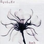 Evolver de Bash