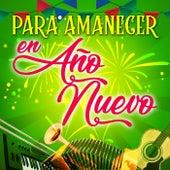 Para Amanecer En Año Nuevo by Various Artists