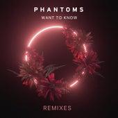 Want To Know (Remixes) de Phantoms