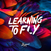 Learning To Fly von Sheppard