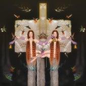 Twin by Julia Stone