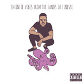 Infinite Vibes From The Lands of Finesse de Skuzii