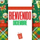 Bienvenido Diciembre von Various Artists