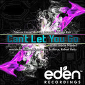 Can't Let You Go feat. Lindsay Wrobel by Marcos Carnaval