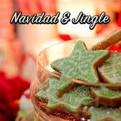 Navidad & Jingle de Various Artists