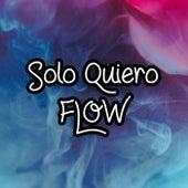 Solo Quiero Flow de Various Artists
