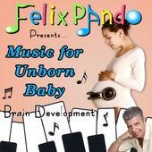 Music for Unborn Baby Brain Development von Felix Pando