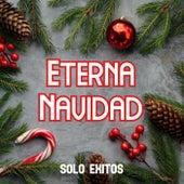 Eterna Navidad. Sólo Éxitos de Various Artists