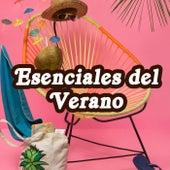 Esenciales del Verano von Various Artists