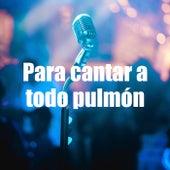Para cantar a todo pulmón by Various Artists