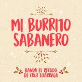 Mi Burrito Sabanero by Banda El Recodo