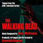The Walking Dead - Theme from the AMC TV Series (Bear McCreary) by Dominik Hauser