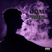 Couleur Pourpre by Opal