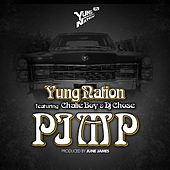 Pimp (feat. Chalie Boy & DJ Chose) - Single de Yung Nation