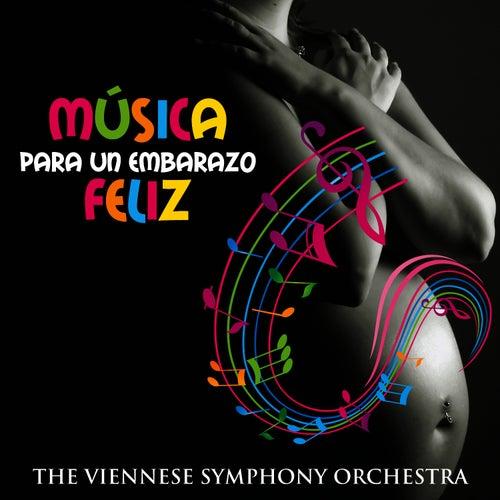 Música para un Embarazo Feliz by The Viennese Symphony Orchestra