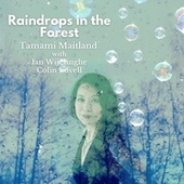 Raindrops in the Forest (feat. Ian Wijesinghe & Colin Lovell) by Tamami Maitland