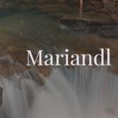 Mariandl van Various Artists