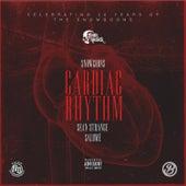 Cardiac Rhythm by Snowgoons