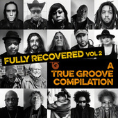 Fully Recovered, Vol 2: A True Groove Compilation by Various Artists