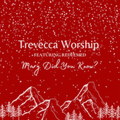 Mary Did You Know? by Trevecca Worship
