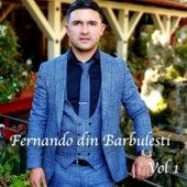 Fernando din barbulesti, Vol. 1 fra Fernando  din Barbulesti