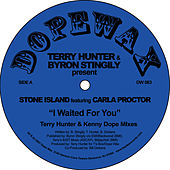 I Waited For You (Remixes) by Terry Hunter