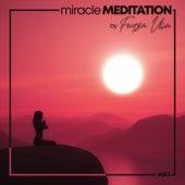 Miracle Meditation, Vol. 1 von Feyza Uca