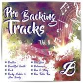 Pro Backing Tracks B, Vol.8 by Pop Music Workshop