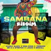 Sambana Riddim by Various Artists