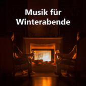 Musik für Winterabende by Various Artists